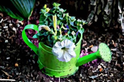 Photograph - Watering Can by Kathleen Stephens