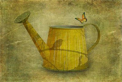 Tin Photograph - Watering Can With Texture by Tom Mc Nemar