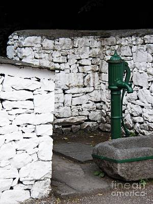 Stone Trough Photograph - Watering Station by David A James