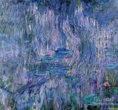 Waterlilies And Reflections Of A Willow Tree Art Print