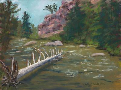Waterlogged Original by Mary Benke