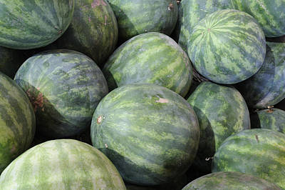 Photograph - Watermelons by Bradford Martin