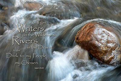 Waters In The Wilderness Art Print