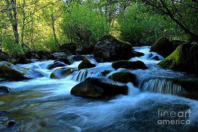 Photograph - Waters Majestic by Tim Rice