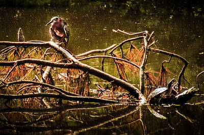 Boondocks Photograph - Waters Of Autumn by Karen Wiles