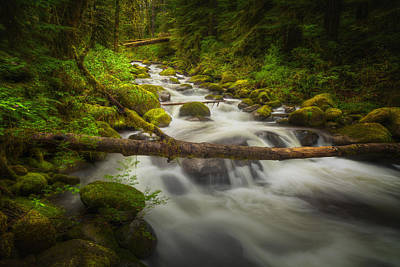 Waters Of Larch Mountain Art Print