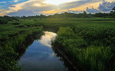 Marsh Photograph - Waterway Through The Marsh by Tony Delsignore