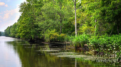 Photograph - Waterway To Sandy Island by Kathy Baccari