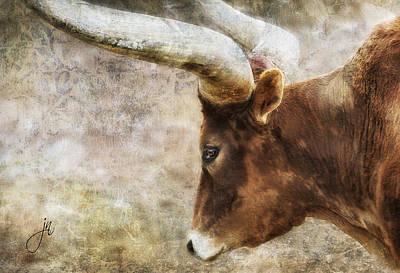 Photograph - Watusi by Judy Neill