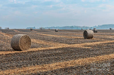 Art Print featuring the photograph Waupaca Straw Rolls by Trey Foerster