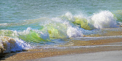 Beach Shell Sand Sea Ocean Photograph - Wave  by Betsy Knapp
