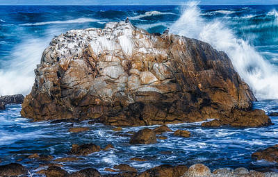 Photograph - Wave by Fernando Margolles