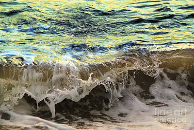 Wave Frozen In Time Goat Rock State Park Sonoma County Print by Wernher Krutein