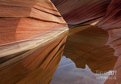 Wave Reflections Print by Mike  Dawson