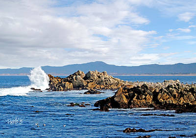 Digital Art - Wave Roost - Pacific Grove California  by Jim Pavelle