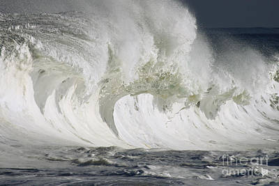 Wave Whitewash Art Print by Vince Cavataio