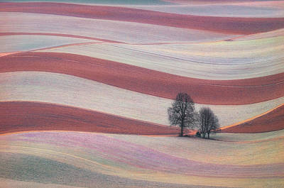 Soil Photograph - Waves by Ales Komovec