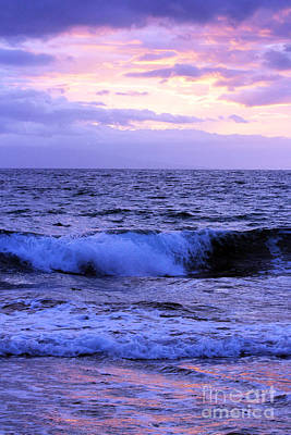 Photograph - Waves At Sunset by Dani Abbott