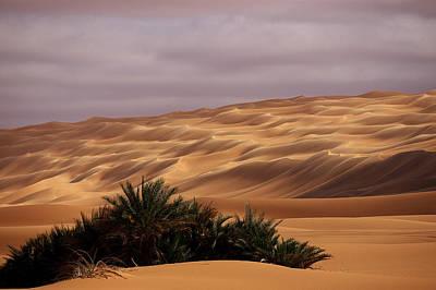 Desert Photograph - Waves by Ivan Slosar