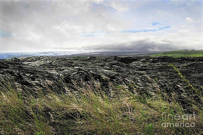 Art Print featuring the photograph Waves Of Clouds Sea Lava And Grass by Ellen Cotton