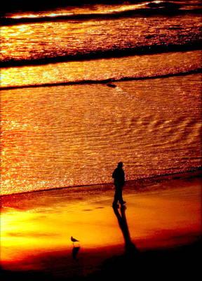 Waves Of Gold Art Print by Karen Wiles