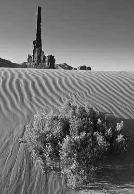 Photograph - Waves Of Sand by Paul Miller