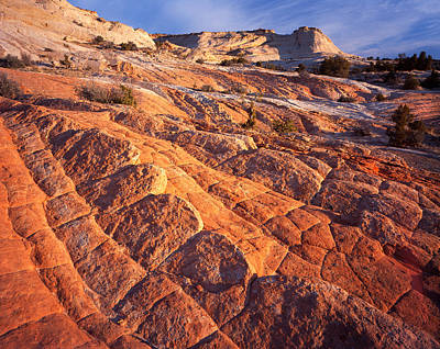 Photograph - Waves Of Sandstone by Ray Mathis