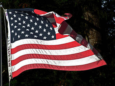 Art Print featuring the photograph Waving Flag by Ron Roberts