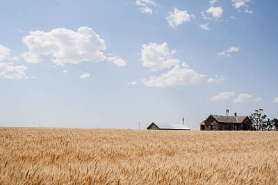Waving Wheat Homestead Art Print