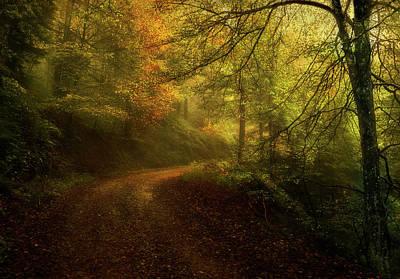 Way In Autumn Art Print