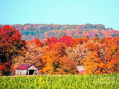 Photograph - Wayne County Ohio Autumn by Gena Weiser
