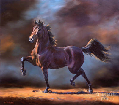 Morgan Horse Painting - Wc Stonecroft Shalimar by Jeanne Newton Schoborg