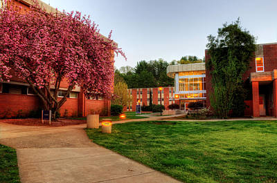 Photograph - Wcu's Walkway To Killian by Greg and Chrystal Mimbs