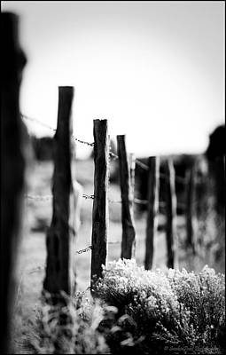 We Are All Fenced In Art Print