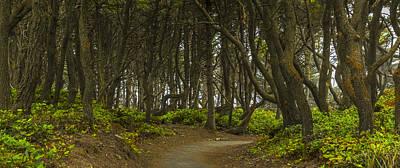 Artwork Photograph - We Follow The Path II by Jon Glaser