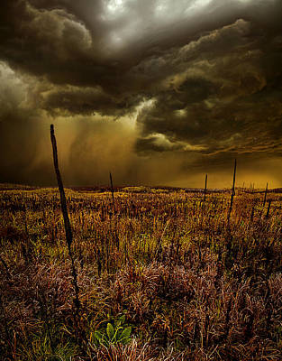 We Stand Alone Art Print by Phil Koch