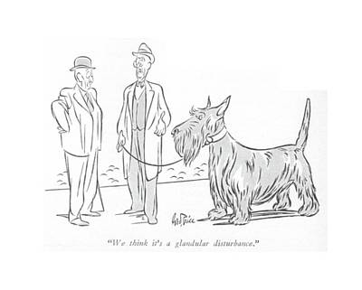 Dog Drawing - We Think It's A Glandular Disturbance by George Price