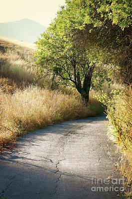 Art Print featuring the photograph We Will Walk This Path Together by Ellen Cotton