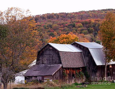 Photograph - Weary Barn by Christian Mattison