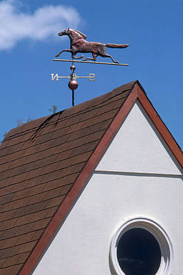Weather Vane Art Print by Del Mulkey