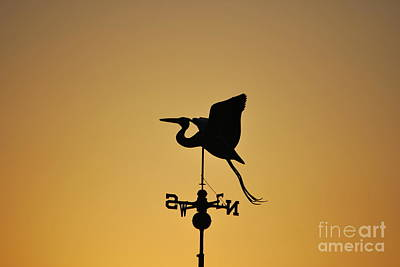 Photograph - Weather Vane Silhouette Horizontal  by Bob Sample