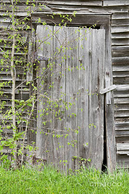 Photograph - Weathered Barn Door by Alan L Graham