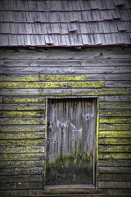 Photograph - Weathered Barn Door by Randall Nyhof