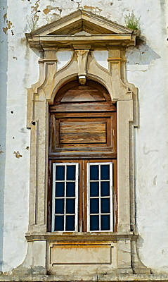 Shark Art - Weathered Brown Wood Window of Portugal by David Letts