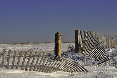 Duxbury Photograph - Weathered by Catherine Reusch Daley