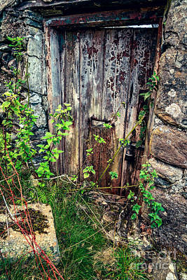 Dilapidated Digital Art - Weathered Door by Adrian Evans