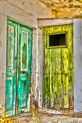 Weathered Doors Art Print by Patricia Hofmeester