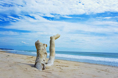 Weathered Driftwood Art Print by Aged Pixel
