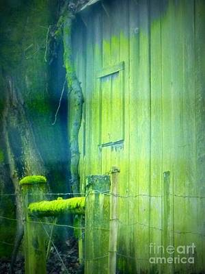 Photograph - Weathered Green Barn by Susan Garren