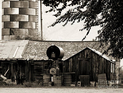 Photograph - Weathered by Jackie Farnsworth